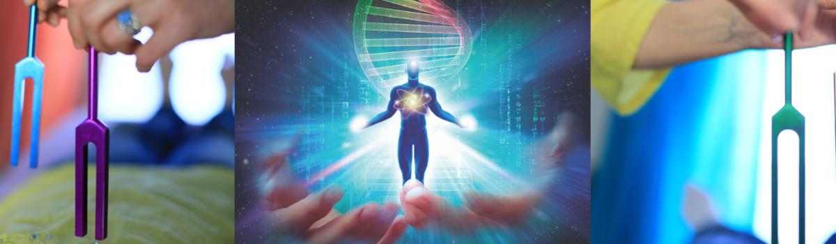 Niveau 3 – Diapasons ADN/ARN
